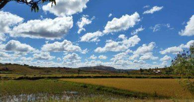 Investir à Madagascar : dans quels secteurs ? Elman dans les champs