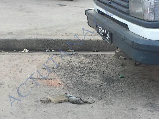 J'ai trouvé un rat à Analakely